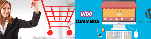 WordPress eCommerce with WooCommerce Course