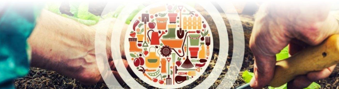 Food Forest Design & Care for Cities and Suburbs Course