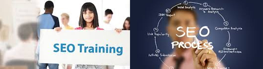 Online SEO Essential Training Course